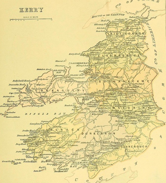 Picturesque_Ireland_-_a_literary_and_artistic_delineation_of_the_natural_scenery,_remarkable_places,_historical_antiquitie