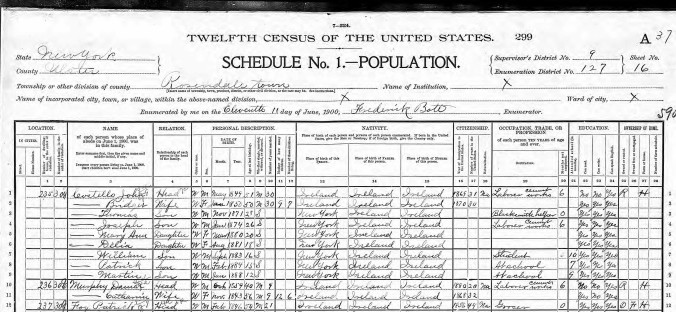 Lynch, Catherine 1900 Census