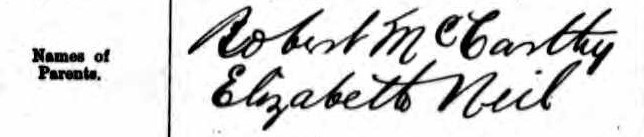 Mitchell-McCarthy 1882 Marriage (2)